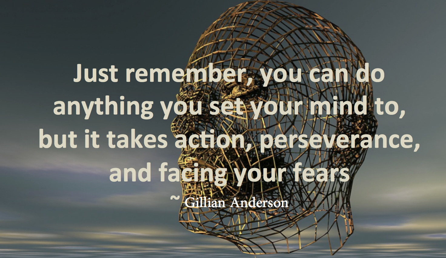 quote-face-fear-anderson